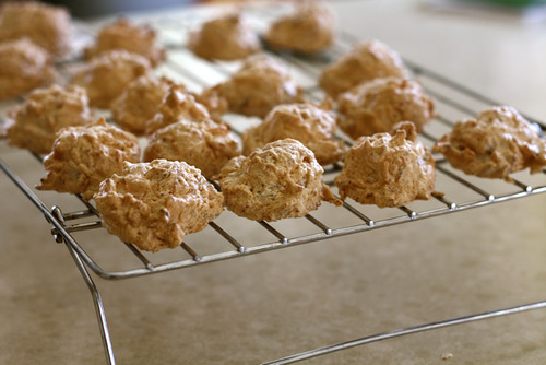 Chocolate Dipped Toasted Coconut Macaroons