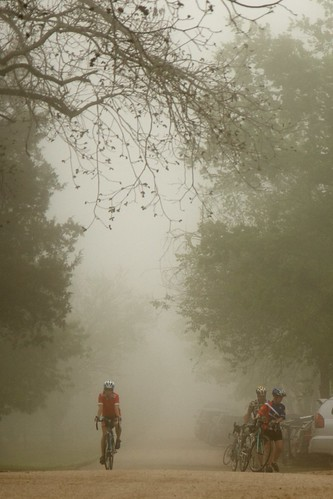 The Cyclist Who Came From The Fog