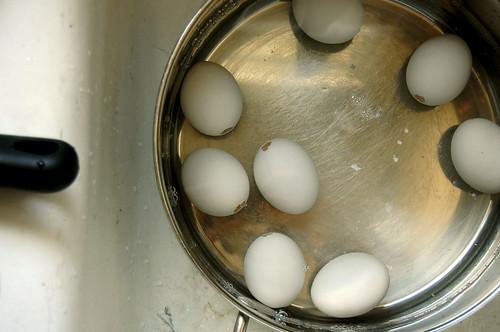 eggs, water