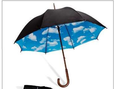 moma umbrella