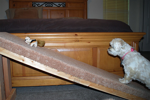 I-think-I-ca-I-think-I-can