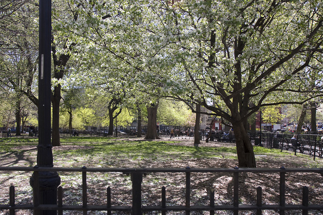 Tompkins Square Park, NYC