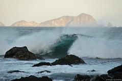 8990 (hectorguillermo) Tags: sea beach mar jalisco wave playa tenacatita ola costalegre