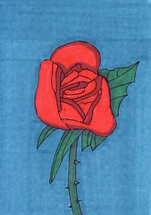 Red Rose (Homemade Pop) Tags: art artwork artist folkart outsiderart folk originalart contemporary drawings pop popart homemade marker prints prismacolor foodart doodling 5x7 magicmarker foodpackaging pilotpen cheapart retroart brightart originalillustration quirkyart