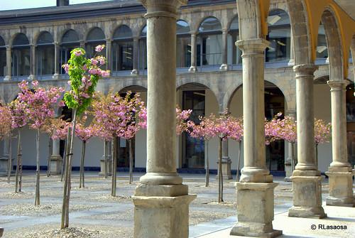 Claustro del Convento de Santiago, Pamplona by Rufino Lasaosa