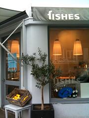 Fishes - Utrecht
