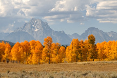 Mt Moran (bhophotos) Tags: travel autumn trees usa mountain nature colors landscape geotagged nikon day cloudy wyoming tetons grandtetonnationalpark d300 oxbowbend mtmoran 2470mmf28g projectweather pwfall