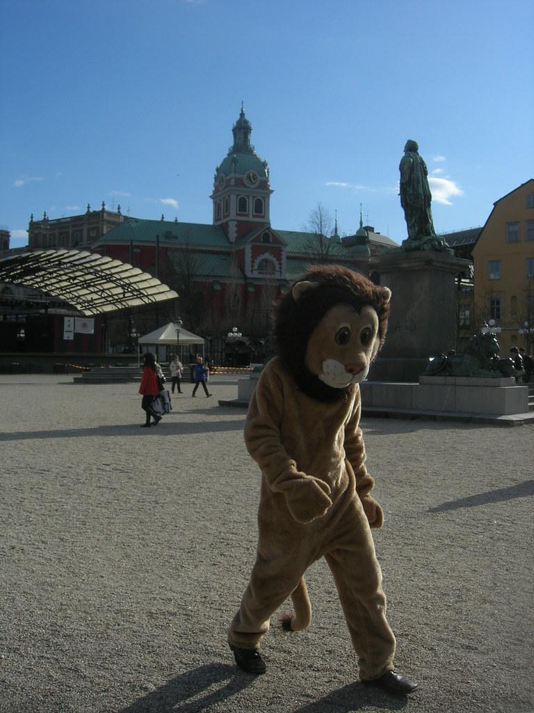 Lion in Stockholm