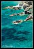 Wild and blue (Stathis Chatzistathis) Tags: blue light sea green beach nature water d50 nikon europe colours place magic location greece impressions nikkor liquid breathtaking skopelos 2010 sporades stathis 1685 ελλάδα θάλασσα thalassokosmos αιγαίο top20blue top30green σκόπελοσ 1685vr σποράδεσ