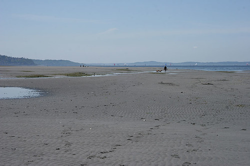 Minus tide - South of Richmond Beach