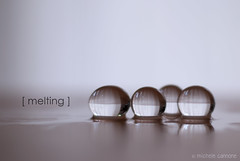 Melting (Michele Cannone) Tags: light reflection water ball drops melting balls drop sphere melt transparent liquid gel