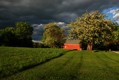 springtime melodrama (placeinsun) Tags: trees light red sky green grass clouds landscape spring vermont barns fields