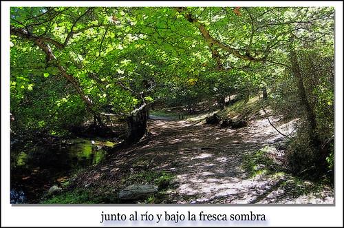 río jarama