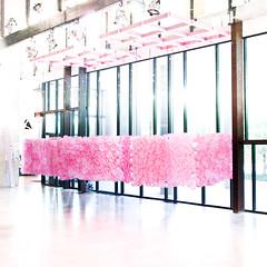 (samuel ludwig) Tags: columbus ohio architecture spring nikon installation d200 2010 ksa knowltonhall knowltonschoolofarchitecture mackscoginmerrillelam sp10installation
