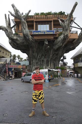 Restaurante sobre un árbol