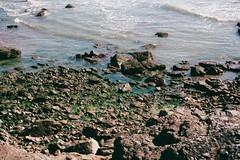 Pebbly (dichohecho) Tags: film beach water wales analog weed sunny pebbles shore analogue pentaxmesuper porthcawl fujisuperia400 fujisuperiaxtra400 roll6 dichohecho withnialloswald