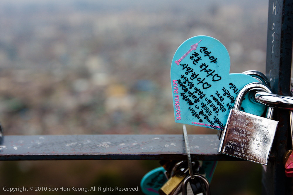 Locks of Love @ N Seoul Tower, Seoul Korea