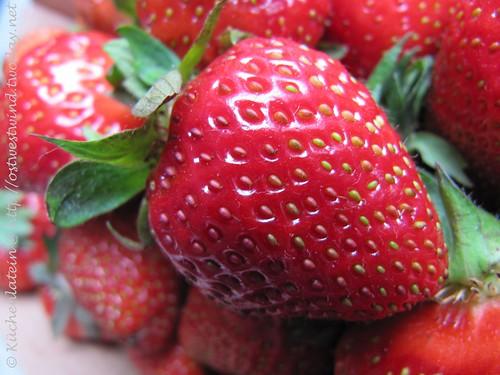 Erdbeeren 2010