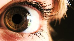 I see you...you see me (NatalieJane) Tags: brown eye window look closeup hair gold glare eyelashes watch deep eyeball stare pupil inquire