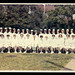 [Church Home and Hospital School of Nursing, class of 1967]