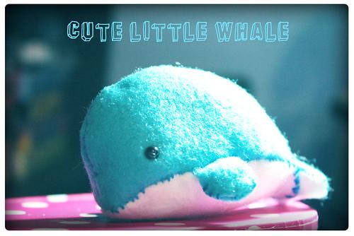 The whale BALELA