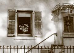 cadre surann (Matthias CHARPIOT) Tags: door window wall canon vintage eos alsace shutter porte mur fentre 1022mm 1022 vieux olde fenetre 50d surann