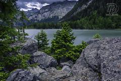 169B5634 (DDPhotographie) Tags: derborence eau lac montagne suisse vs