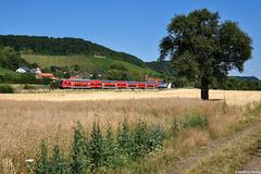 Main-Spessart-Express bei Kaiserwetter im Maintal (Sp Dr S60) Tags: maintal main ziegelanger zeil wein weinberg bamberg frankfurt würzburg hasfurt msx mainspessartexpress spessart br146 doppelstock twindexx dosto97
