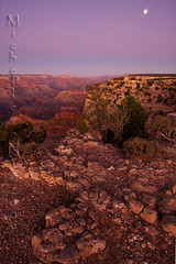 Grand Canyon Sunset (Michelle in NY) Tags: blue light sunset arizona nationalpark rocks purple grandcanyon canyon ambient gcnp canoneos40d michellegreene michelleinny wwwmichelleneacycom michelleneacygreene