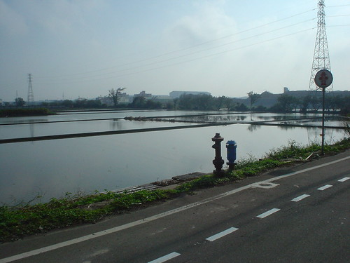 31.桃園常見的池埤