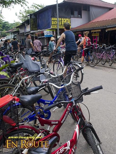 Pulau Ubin Bike Rentals