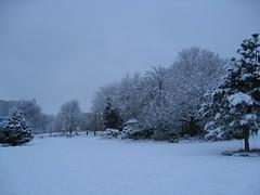 Weston Park Snow