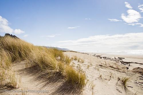Sun shine on the oregon coast? That's unheard of.