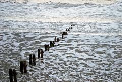 DSC_0339-1 (Eurotrash007) Tags: christmas winter sea 2009 piles sandsend tidebreak