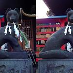 DSCF0675 小右衛門稲荷神社 oinarisan (parallel 3D) thumbnail