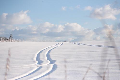 snow tracks...