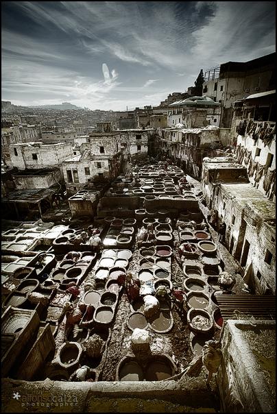 Curtidores de Fez: Angular View
