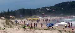 Praia da Ferrugem (alvez) Tags: reveillon summer brazil sun sol praia beach brasil playa verano brazilian galera garopaba ferrugem brasileiro sul guarda calor guardadoembau verao