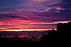 tang de.... tt (The Sleepwalker ) Tags: morning pink blue light red sky cloud water colors clouds eau purple lumire couleurs ciel nuages matin bassin etang thau pisciculture