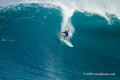 Surfing a huge swell at Waimea Bay, on the north shore of Oahu, Hawaii. (Sean Davey Photography) Tags: usa color horizontal hawaii surf surfing bigwavesurfing hugesurf seandavey giantwaves surfhistory heavywave powerfulwaves giantsurf surfnorthshore surfersphotographs imagessurf surfbigwave bigwavesurfers biggestwaves waimeabaynorthshoreoahu