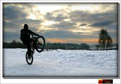 Playing in the Snow (moi_images) Tags: sun mountain snow color colour tree bike scotland glasgow wheelie milngavie 2010 picaweek mugdockcountrypark wk2