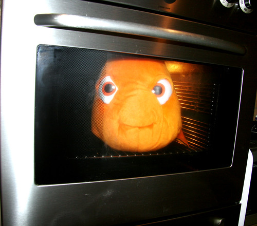Cooking some fish