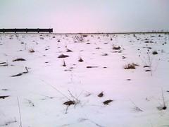 (#18) embankment (j / f / photos) Tags: snow grass delete10 delete9 delete5 delete2 delete6 delete7 empty delete8 delete3 delete delete4 save guardrail embankement deletedbydeletemeuncensored
