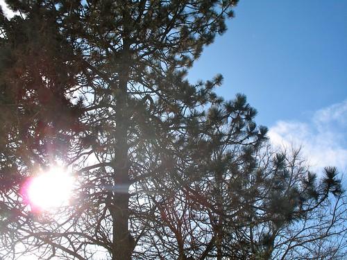 The Sun Shines!