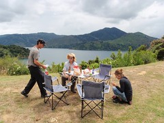 Déjeuner à Marlborough sound