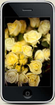 free iphone wallpaper valentines day love