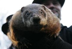 LIFE-US-GROUNDHOG