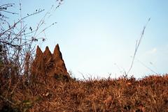 Snake holes (Adesh Singh) Tags: village mobileresearch dharwad dharwar templesofindia hoobli