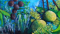 2 Vulnerable Species - Left : Macadamia tetraphylla - Queensland Nut, Rough-shelled Bush Nut and Right : Floydia praealta - Ball Nut (Black Diamond Images) Tags: mural australia nsw macadamia commercialroad florafauna vuln