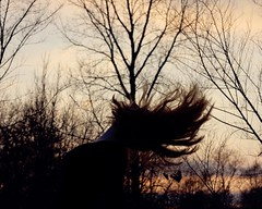 Let us become silhouettes. (Allison Imagining) Tags: sunset colors hair necklace key branches silhoettes tones epic hairflip treespicnik